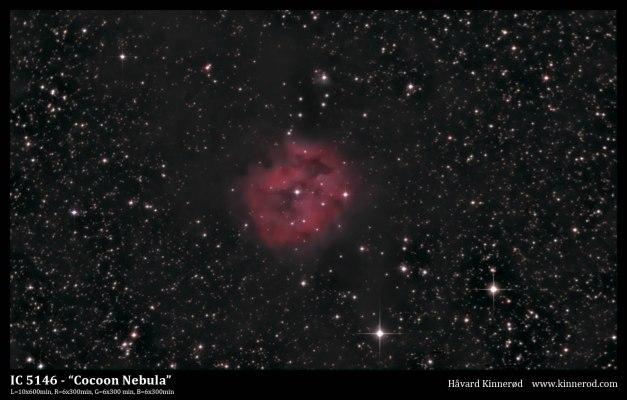 IC5146-Coocon-PS