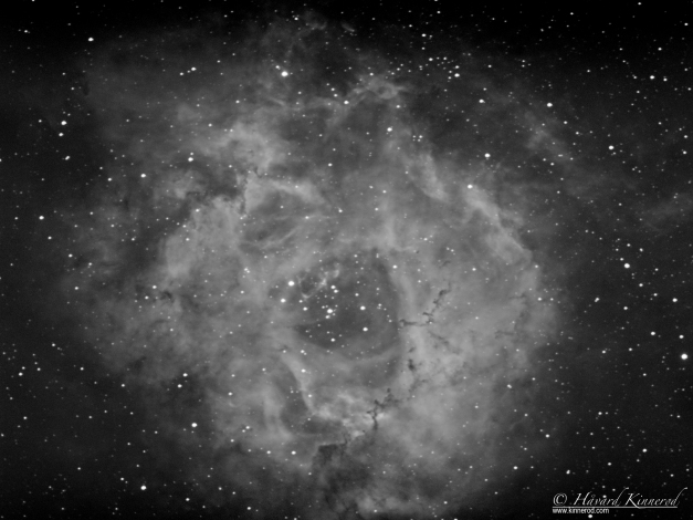 Astrophotography of the rosette nebula NGC2237 Caldwell 49 in hydrogen alpha ( h-alpha Ha)