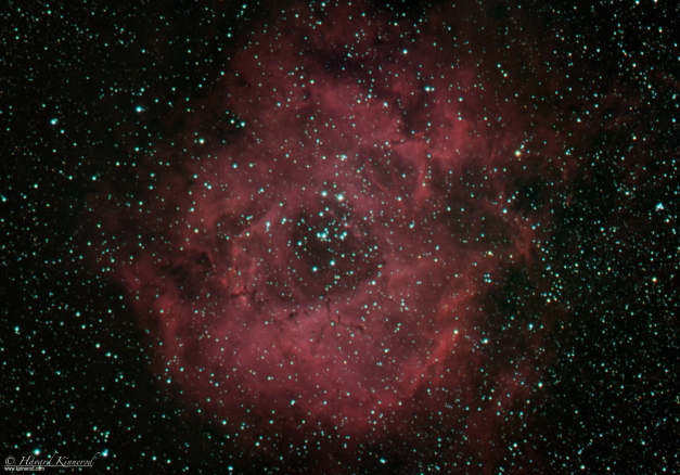Astrophotography of the rosette nebula NGC2237 Caldwell 49 in RGB + hydrogen alpha ( h-alpha Ha)